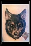 Dog-Tattoo