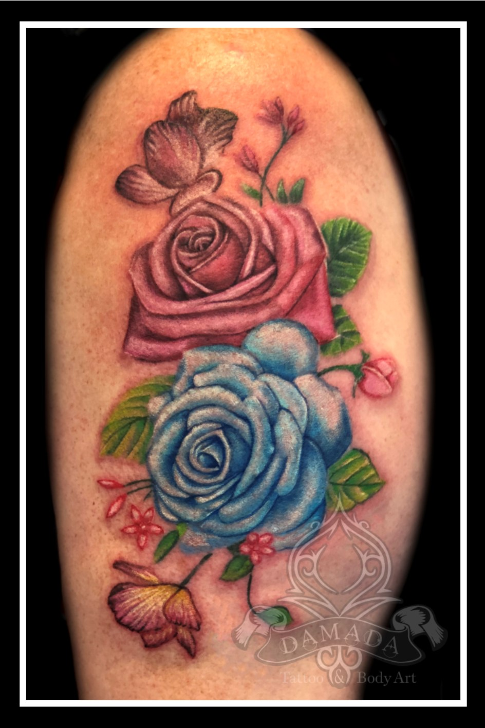 Roses Blue Pink