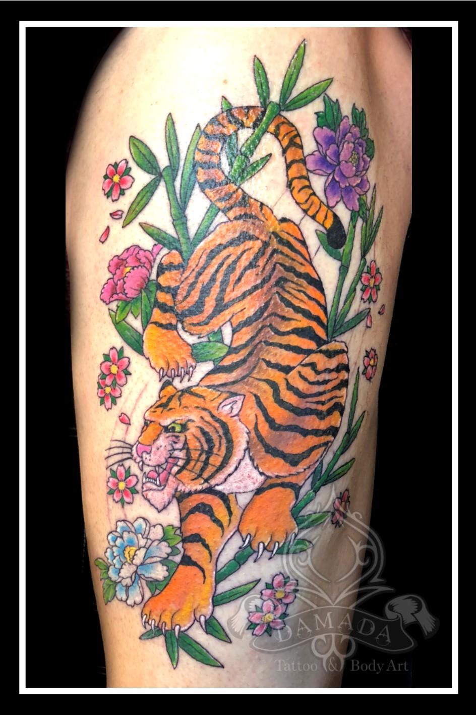 Tiger Bambu