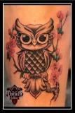 Little-Owl-Cherry-Blossoms