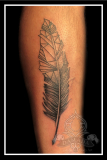 Geometric Feather