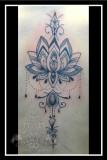 Lotus back
